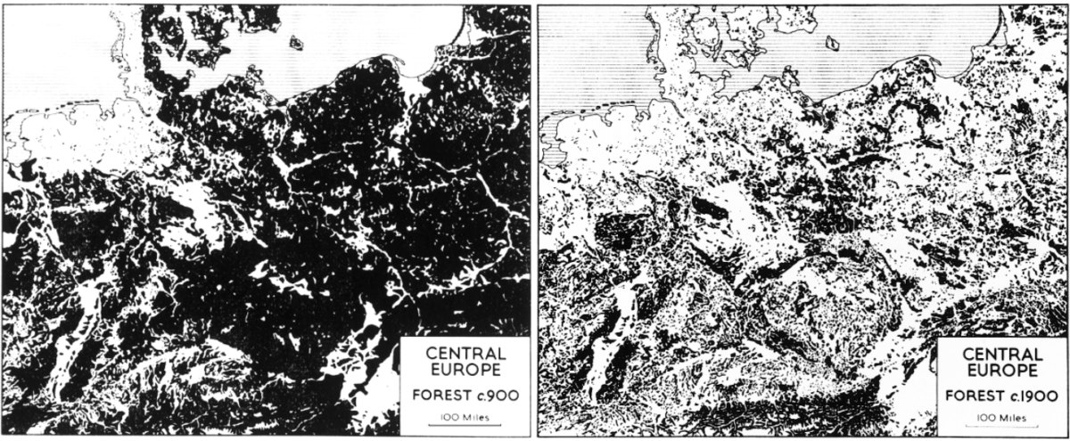 masa forestal en europa central del año 900 vs 1900