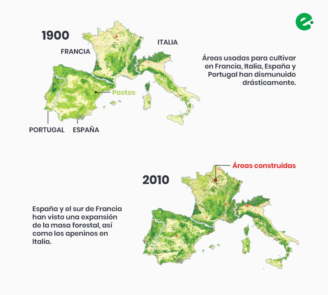 recuperacion de los bosques de espana portugal francia e italia