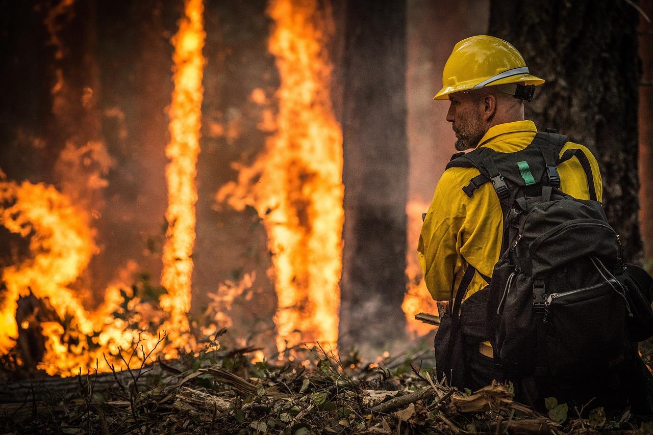incendio forestal y bombero