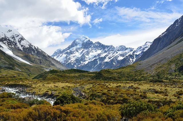tundra-alpina