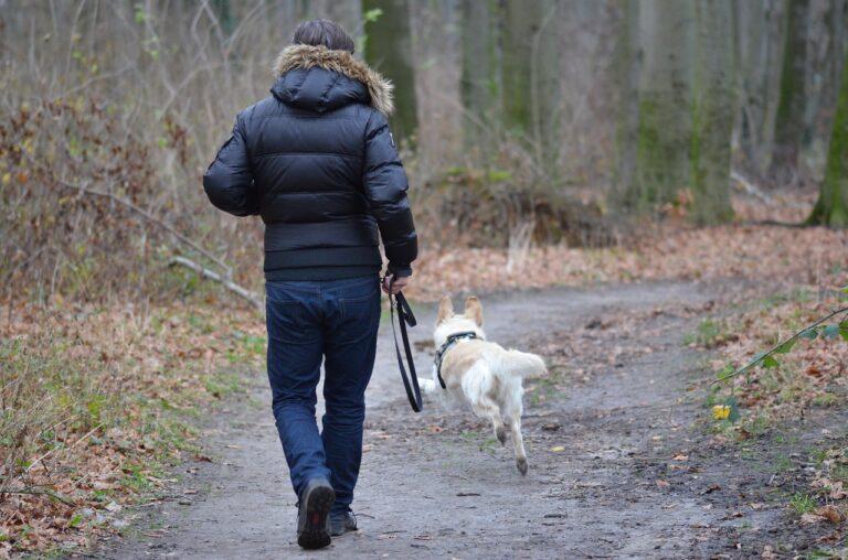 hombre caminando con su perro en el bosque