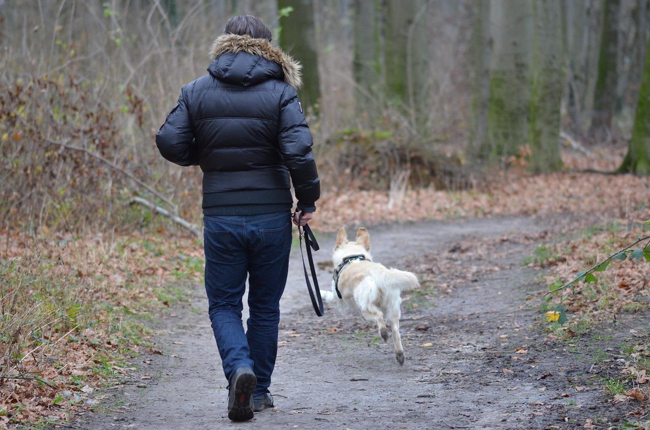 Hombre-caminando-con-su-perro