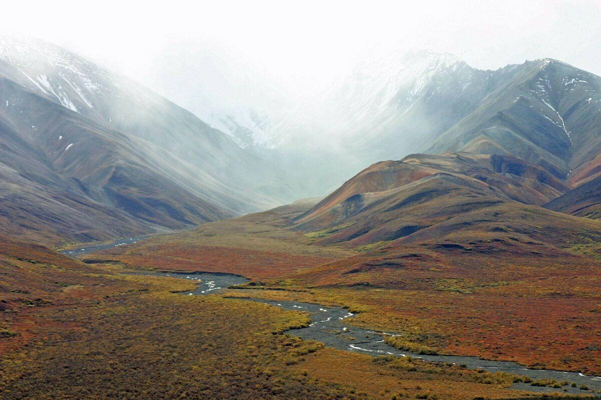 tundra de alaska